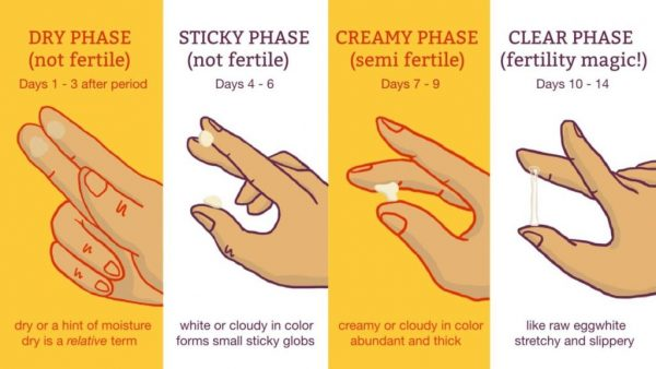 signs of ovulation -ovulation - ovulation days -ovulation symptoms - ovulation discharge - ovulation spotting - ovulation pain - ovulation cycle - best time to get pregnant - ovulation date  - fertile period - fertile days - pregnancy symptoms after ovulation day by day