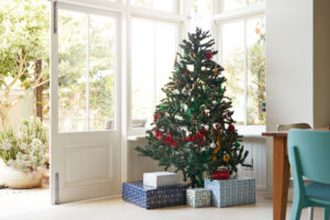Where to Find Christmas Trees in Cairo